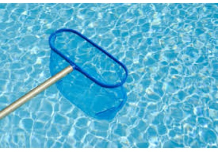 Profitable W. Broward Pool service & repair company